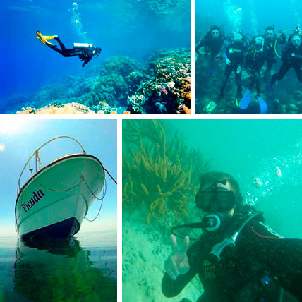Tours y Tickets Buceo en Veracruz