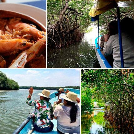 Tour a Mandinga , Recorrido en lancha por manglares desde el Acuario de Veracruz