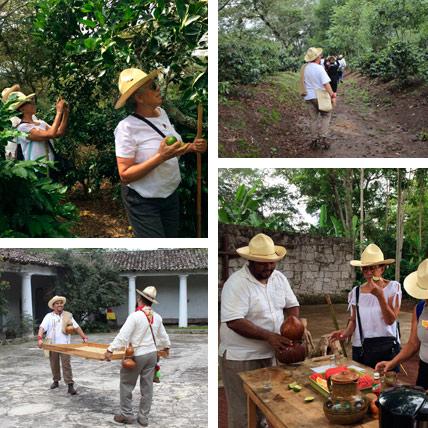 Xalapa Y Travesías Del Café Desde Xalapa – Paquete 3 Días 2 Noches con hospedaje en Xalapa