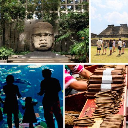 Tours en Veracruz con estrada a museos y Zonas arqueologicas en Veracruz