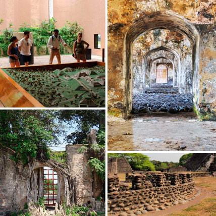 Tours Historicos en el estado de Veracruz